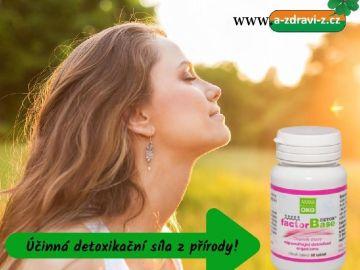 Jarní detoxikace organismu s pomocí bylinek